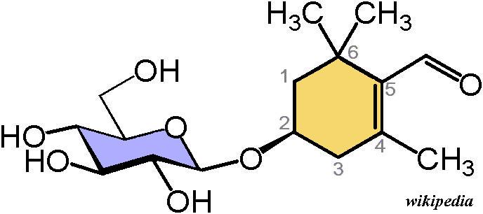 Picrocrocine