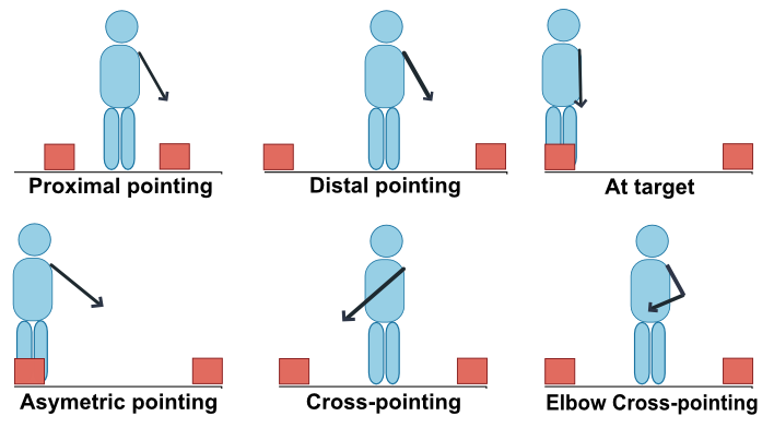 Schematic representation of main pointing gestures.