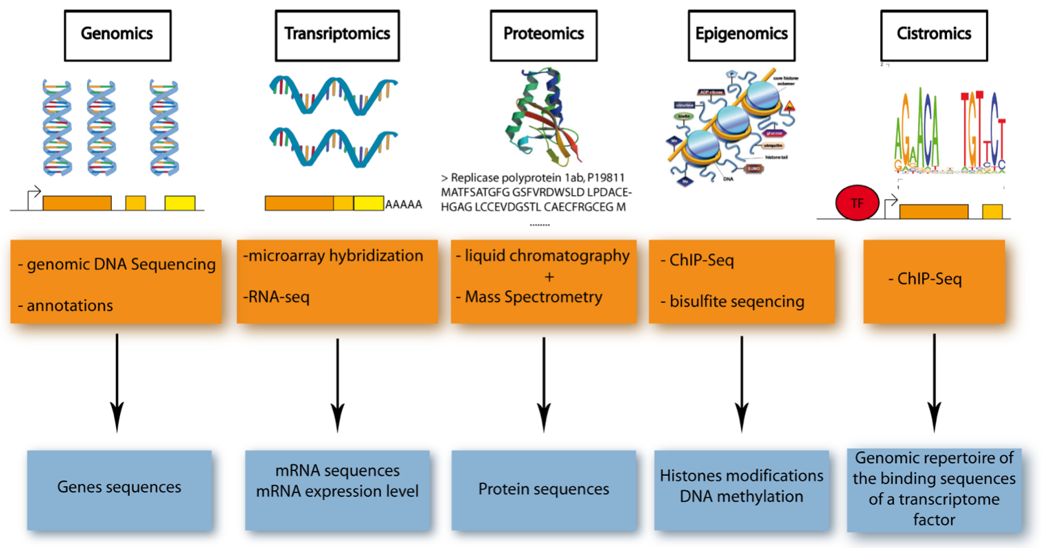 Five Major Omics Technologies.