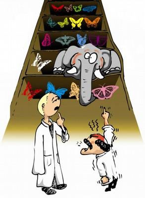 ADN tout un programme.jpg