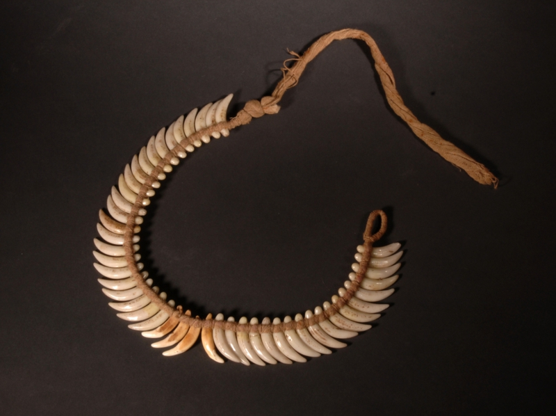 Image d'un collier avec fausses dents de chien