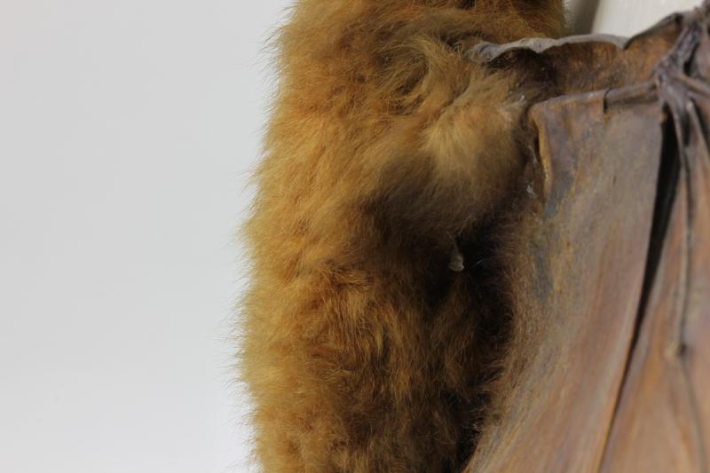 Poils de roussette naturalisée (Pteropus spp.)
