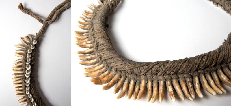 Image d'un collier de dents de chien